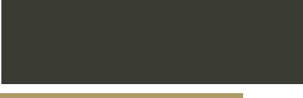 logo-Lingerie styling